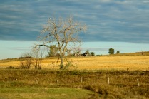 North Dakota's scenery along the highway.