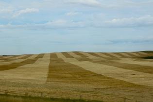 North Dakota's peaceful scenery along the highway.