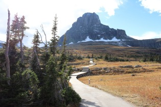 The view at the beginning of our Logan Pass hike in Glacier National Park.