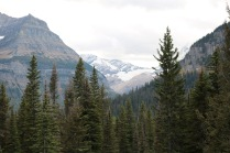 Jackson Glacier is approximately the seventh largest of the remaining 25 glaciers in Glacier National Park.