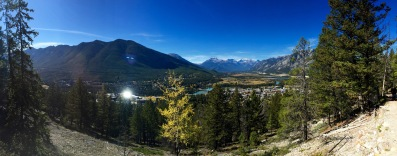 View along the Tunnel Mountain trail in Banff National Park.
