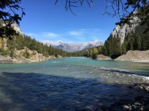 A view of Bow River in Banff National Park.