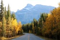 Beautiful view along the Lake Minnewanka Scenic Loop in Banff National Park.