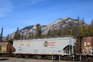 One of the many trains that pass through Banff National Park.