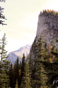 This is the Big Beehive mountain along the Lake Agnes trail in Banff National Park.