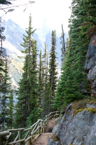 Beautiful scenery along the Plain of Six Glaciers trail in Banff National Park.