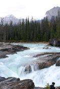 Beautiful rapids of the Kicking Horse River flowing toward the natural bridge in Yoho National Park, BC.