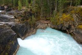The natural bridge in Yoho National Park, BC.