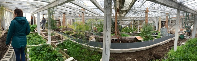A brief tour of the Boreal Gardens in Churchill, Manitoba. Being a remote community with a short growing season, this greenhouse can provide fresh fruits and veggies to locals in a more economical fashion.