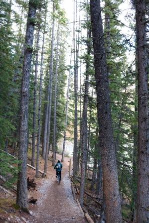 Amanda riding on a trail along Lake Minnewanka in Banff National Park.