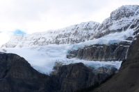 "Crowfoot Glacier (minus one ""toe"") along the Icefields Parkway."