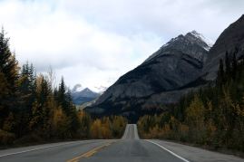 Beautiful views along the Icefields Parkway.