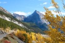 Beautiful fall colours along Medicine Lake in Jasper National Park.