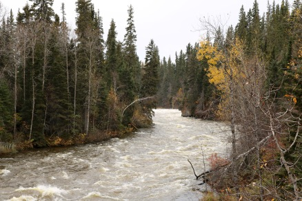View from the suspension bridge in Pisew Falls Provincial Park, Manitoba