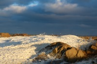 The foaming shoreline of Hudson's Bay, Churchill, Manitoba