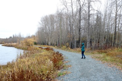 Flinty's Boardwalk turns into Flinty's Trail as it encircles Ross Lake in Flin Flon, MB