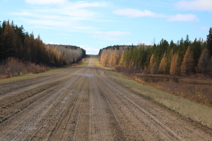 Road to Prince Albert National Park, SK