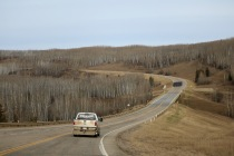 The trees are looking bare in Northern Alberta