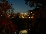 Edmonton Lights