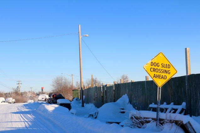 Dog Sled Crossing