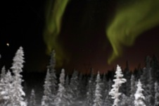 Aurora borealis on Ingraham Trail, Yellowknife