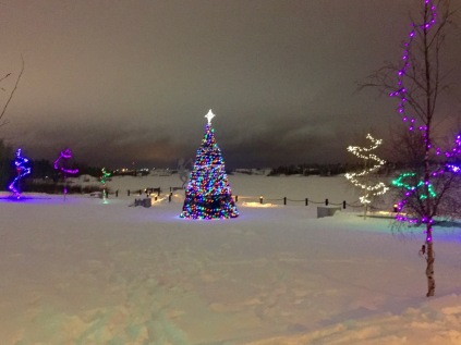 Christmas Lights at Somba K'e Civic Plaza next to City Hall in Yellowknife