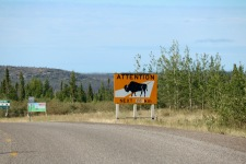 Bison Sanctuary on the way from YK to Fort Simpson